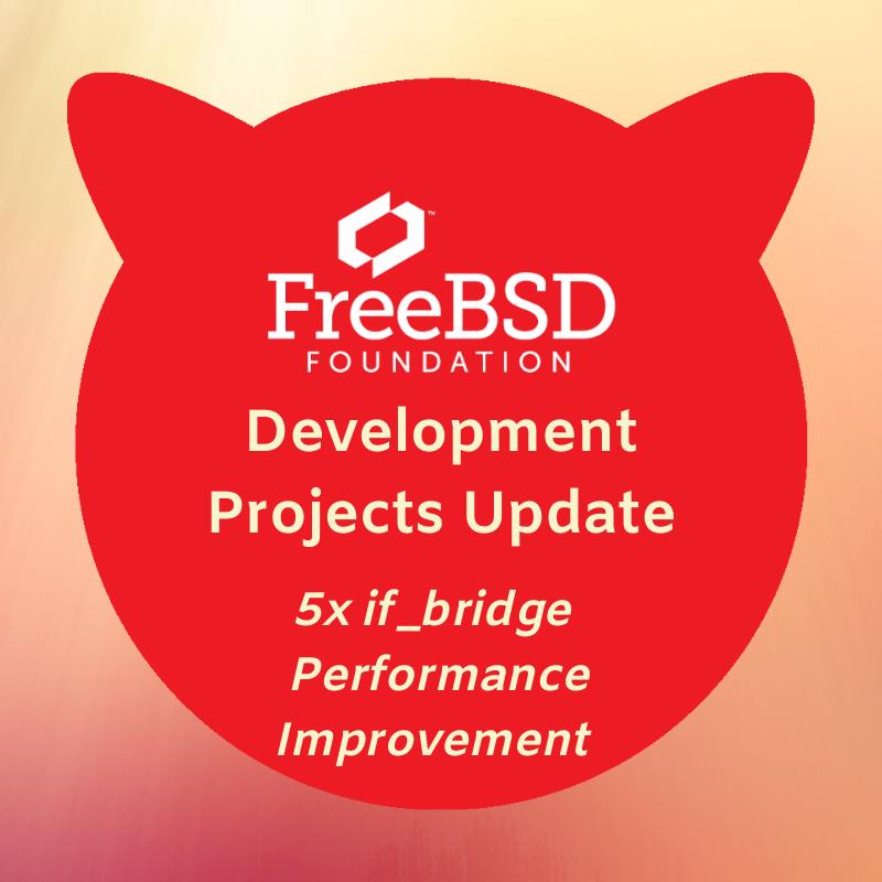 5x if_bridge Performance Improvement